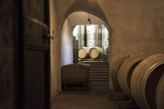 view from the cellar of Castello di Montegiove in Umbria near Orvieto