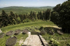 View of the park and garden of Castello di Montegiove in Umbria near Orvieto