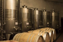 new stain less steel tanks with temperature control and french tonneaux in the cellar of Castello di Montegiove in Umbria near Orvieto